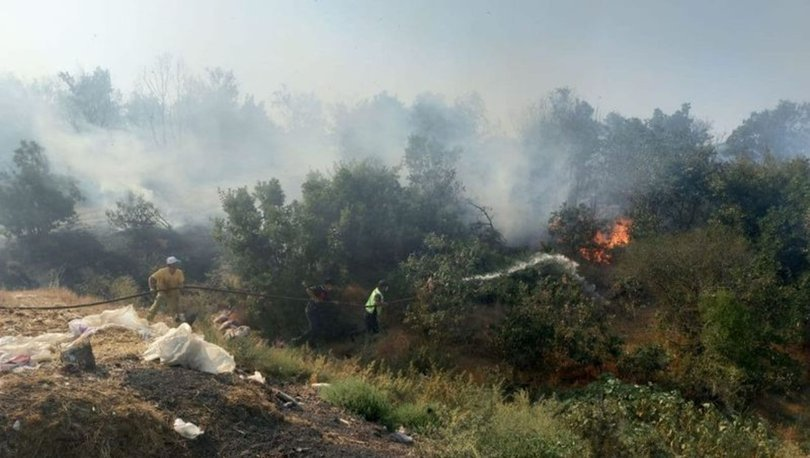 SON DAKİKA! Bakan Çavuşoğlu'ndan yangın açıklaması: Bugün ve yarın kritik gün - Haberler