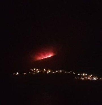 Milas'ta bir orman yangını daha çıktı