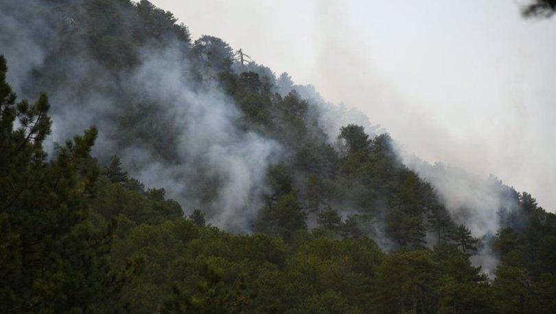 İletişim Başkanlığı, Türkiye'nin farklı bölgelerindeki orman yangınlarıyla ilgili son durumu paylaştı