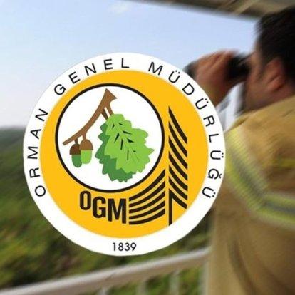 OGM'den 'iz ödenek' açıklaması ve 'Ormanspor' iddiasına yalanlama