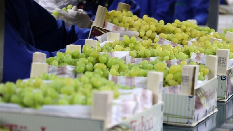 Sofralık üzümde ihracat hedefi 200 milyon dolar