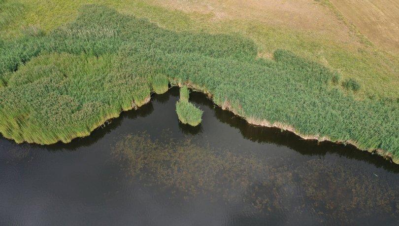 Aras Dağları eteklerindeki vaha: Üçkaya Gölü