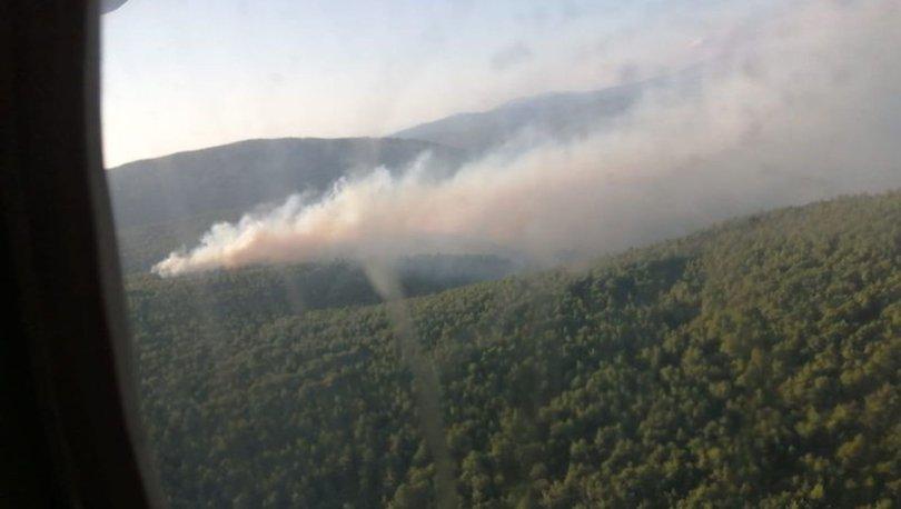 ÇEŞME'DE YANGIN! Son dakika: Çeşme'de orman yangını çıktı! - VİDEO HABER