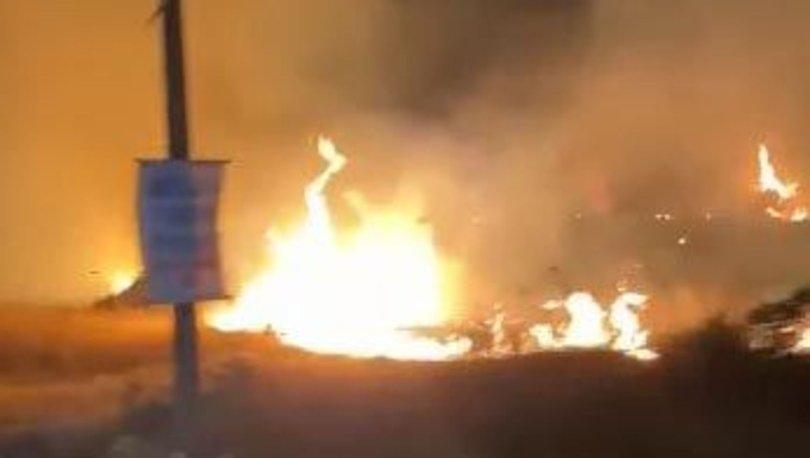 Didim'de 5 dönüm makilik alan yandı