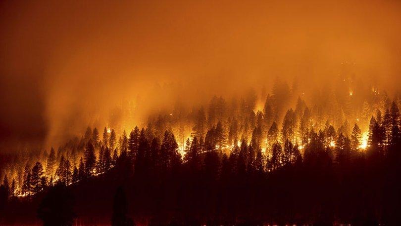 SON DAKİKA: California'daki yangında yok olan ormanlık alan 210 bin hektara yaklaştı