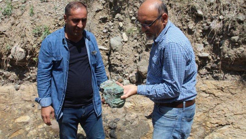 Erzurum'da bulundu! 160-170 milyon yıl öncesine ait... - Son dakika haberleri