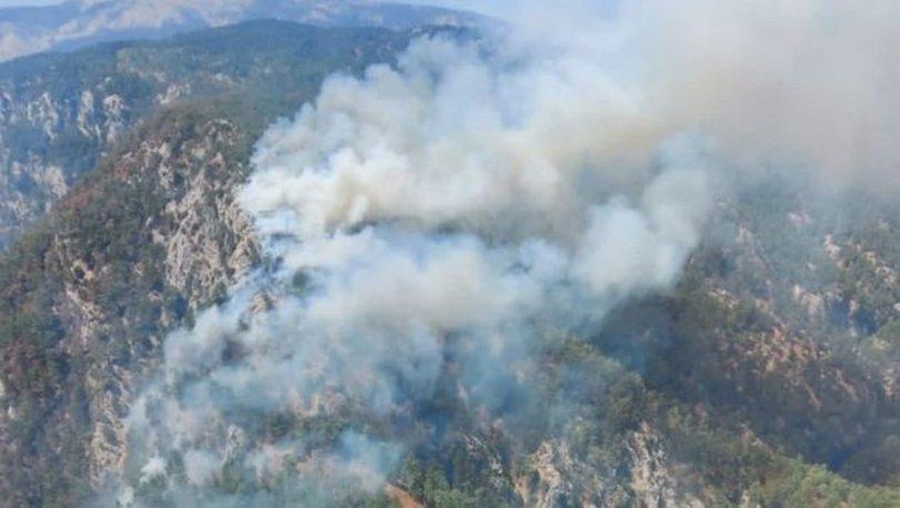 KORKUTAN OLAY! Son dakika: Muğla ve İzmir'de orman yangınları çıktı! - Haberler