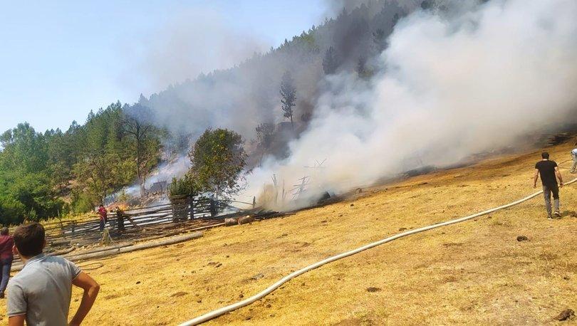 Balıkesir'de korkutan orman yangını!  - Haberler