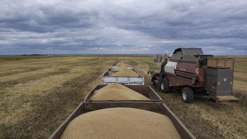 Kazakistan'da tahıl alanları kurudu