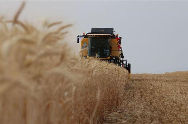 Tarımsal Ar-Ge'ye 30 milyon TL destek