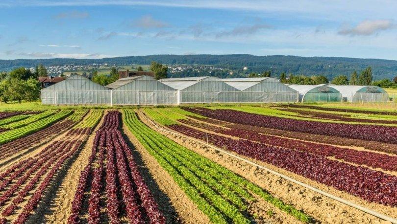Tarımsal çeşitlilik iklim değişikliğiyle değişecek