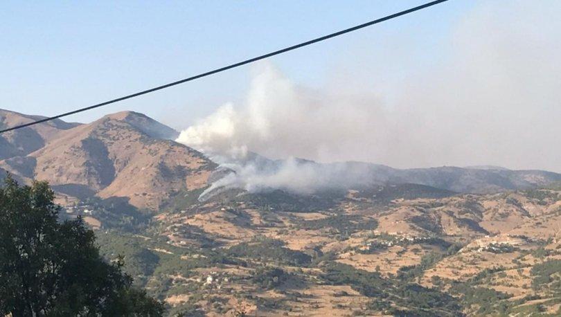Bingöl'de ormanlık alanda çıkan yangına müdahale ediliyor