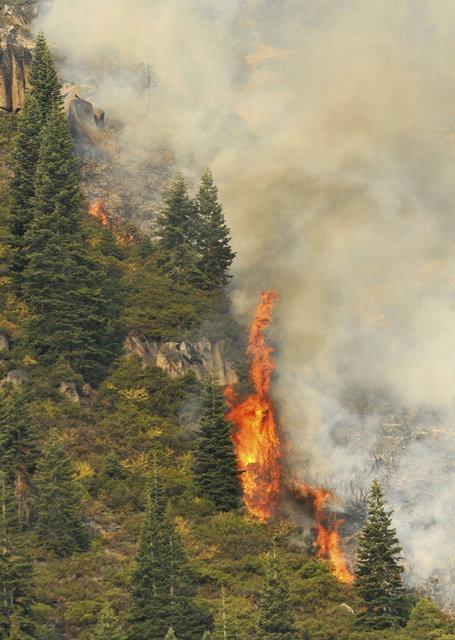 """SON DAKİKA: ABD'nin California eyaletindeki """"Caldor"""" yangını 756 kilometrekare alanı tahrip etti"""