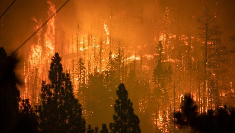 Caldor Yangını: California'da on binlerce kişi evlerinden tahliye edildi