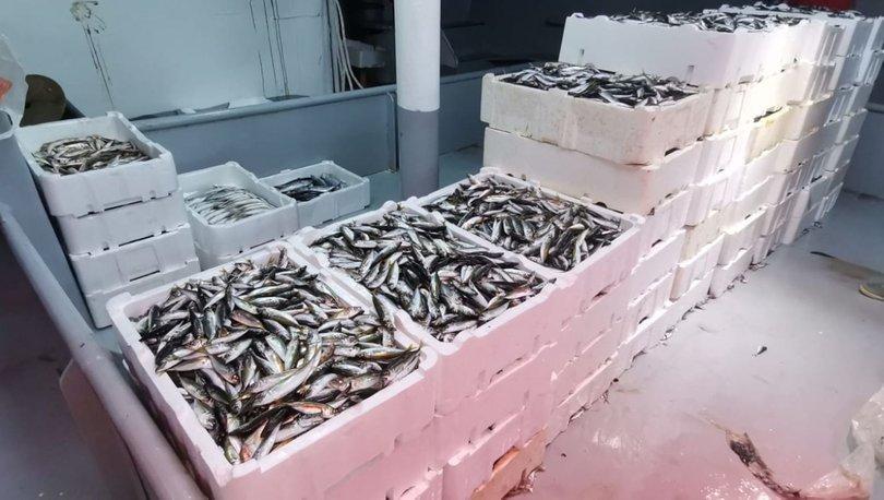 Sezon açıldı! Balık fiyatları nasıl? - Haberler