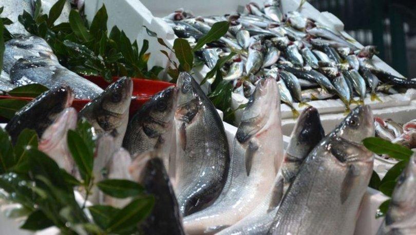 Hangi ayda hangi balık yenir? Balık sezonu açıldı! İşte Eylül ayında yenecek balıklar...