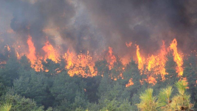 BAYRAMİÇ YANIYOR! Son dakika: Çanakkale'de orman yangını çıktı! - Haberler