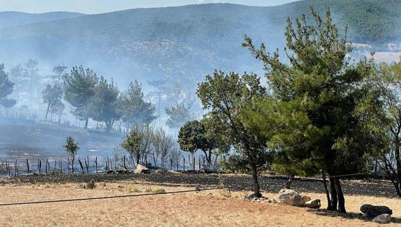 Çanakkale orman yangınlarında 30 hektarlık alan zarar gördü - Son dakika haberleri