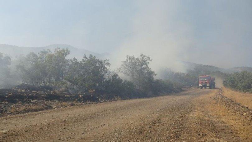 NİHAYET! Son dakika: Bingöl'deki yangın 6 gün sonra kontrol altına alındı
