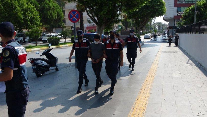 Caretta caretta katliamında yeni gelişme - Haberler