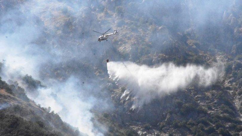 40 HEKTAR KÜL OLDU! Yangın 4 gün sonra söndürüldü - Bitlis Haberleri