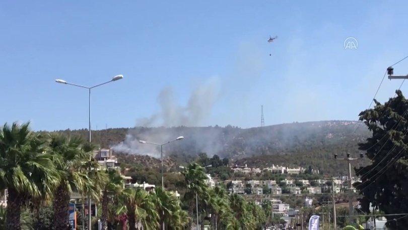 Son dakika: Bodrum'da bir orman yangını daha! - Haberler