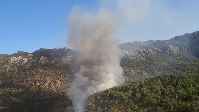 Milas'ta ormanlık alanda yangın! - Haberler