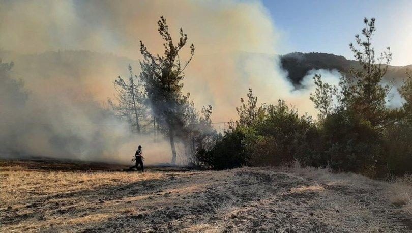 Orman Genel Müdürlüğü açıkladı! 8 yangından 7'si kontrol altında