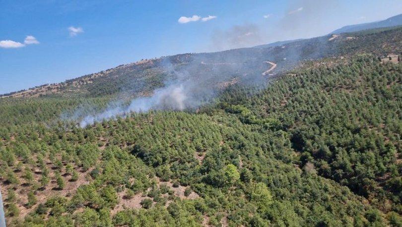 SON DAKİKA! Balıkesir Burhaniye'de orman yangını