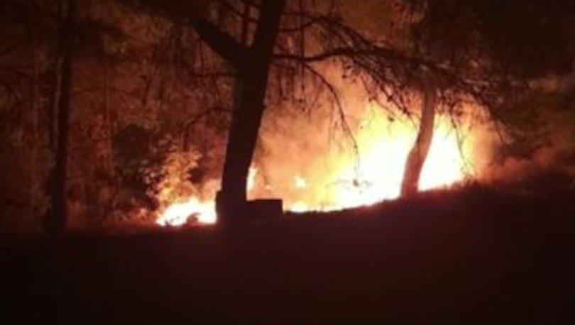 Datça'da çıkan orman yangını söndürüldü