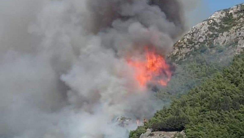 Hatay'da korkutan orman yangını! - Haberler