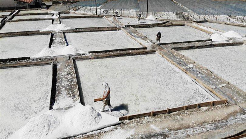 Erzincan'da doğal yöntemlerle çıkarılan Kemah tuzu tescillendi