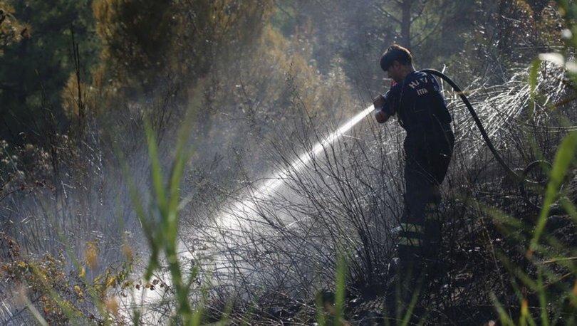 ORMAN YANGINI! Son dakika: Hatay'daki orman yangınında 3 gözaltı! - Hatay haberleri