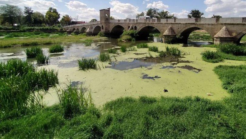 SON DAKİKA: Tunca Nehri'ndeki kirlilik doğal yaşamı olumsuz etkiliyor - Haberler