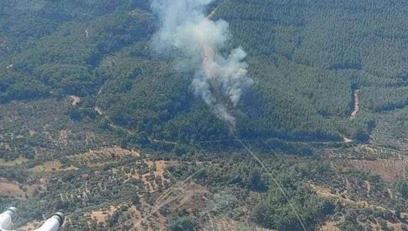 Son dakika haberi İzmir'de korkutan  orman yangını!
