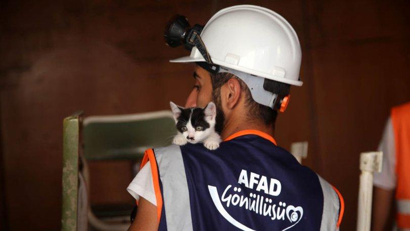 Orman yangınları için ne kadar bağış toplandı! Son dakika: AFAD açıkladı
