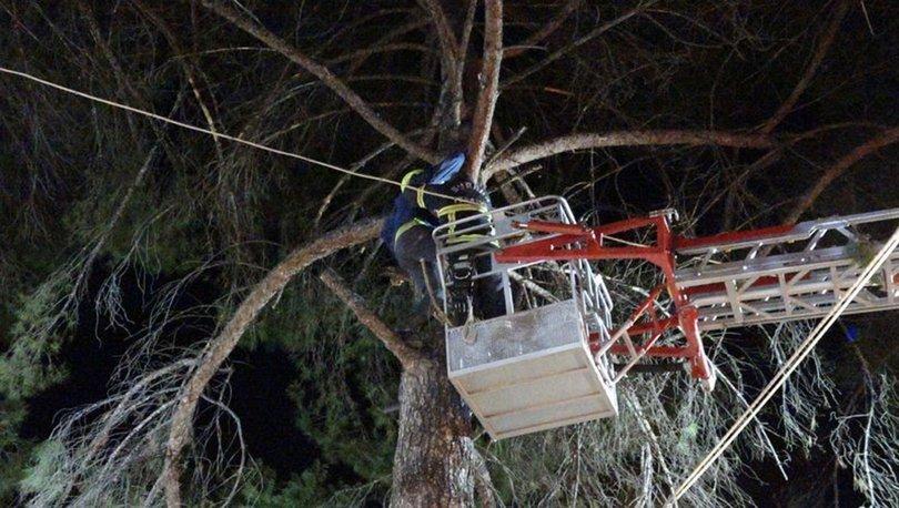 Burdurda ağaca düşen yamaç paraşütçüsünü itfaiye kurtardı