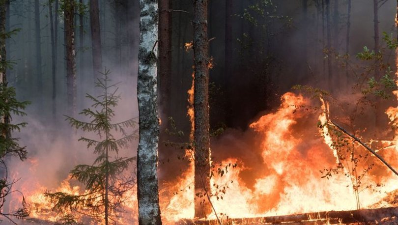 SON DAKİKA: Dünyanın en soğuk bölgelerinden biri olan Yakutistan'daki orman yangını uzaydan görüntülendi!