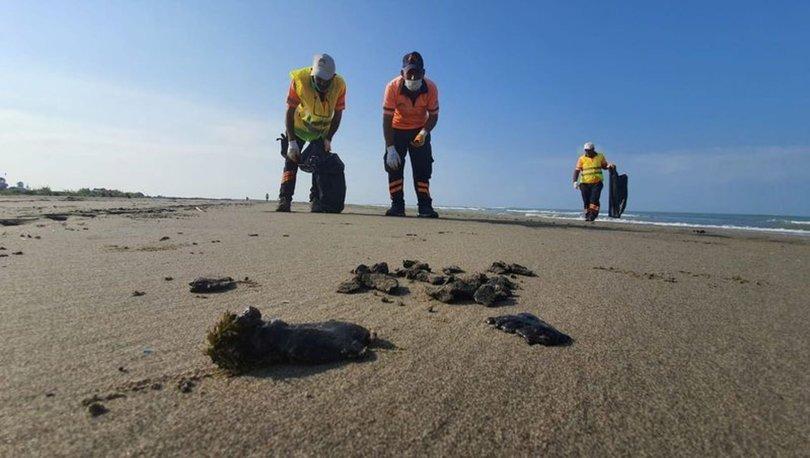 Mersin'de petrol sızıntısı temizliği
