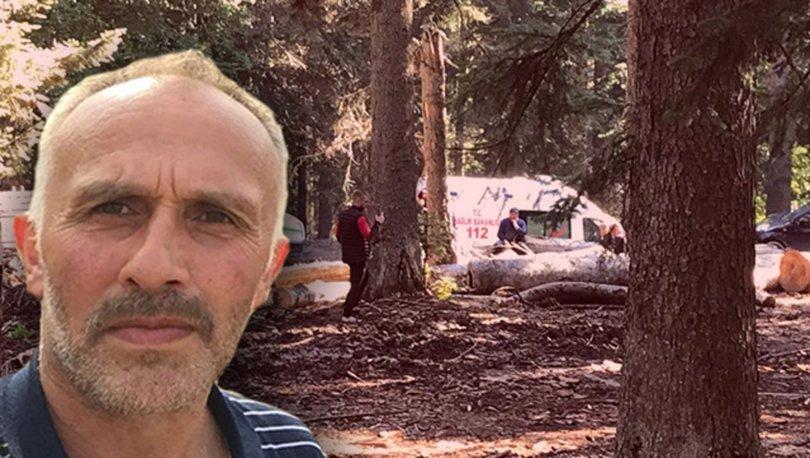 Orman işçisi kestiği ağacın altında kalarak öldü