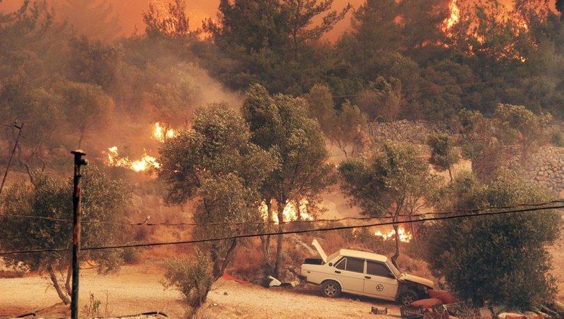 Muğla'daki yangınlarda korkunç bilanço! - Haberler