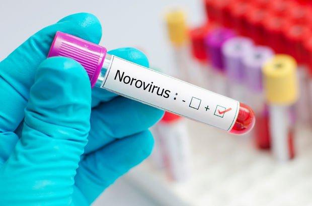 Bilim Kurulu Üyesi Prof. Dr. Yavuz'dan Norovirüs uyarısı!