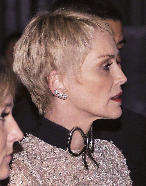 Sharon Stone ödediği hesabın iki katı bahşiş bıraktı! - Magazin haberleri