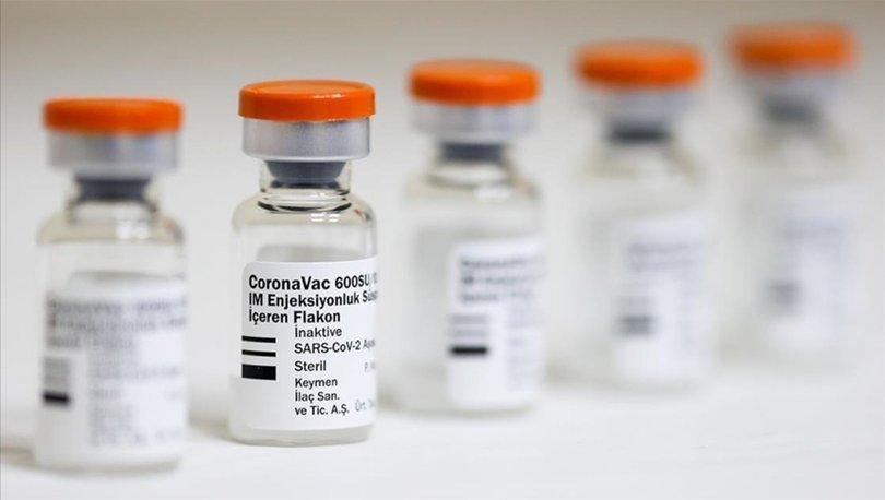 Türk Toraks Derneği inaktif CoronaVac aşısının etkilerine ilişkin iki çalışma yaptı
