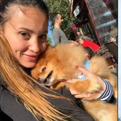 SON DAKİKA: Köpek otelindeki ölüme suç duyurusu - Haberler