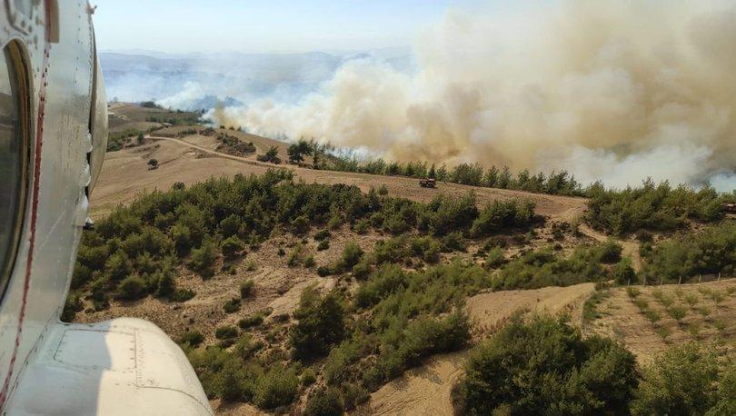 Osmaniye'de korkutan orman yangını! - Haberler