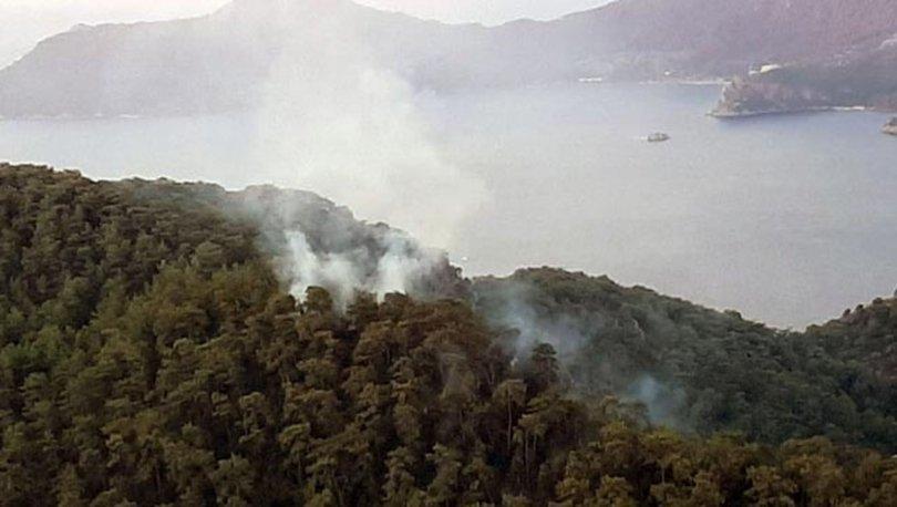 Muğla'da 3 günde yıldırım düşmesi sonucu 37 yangın çıktı