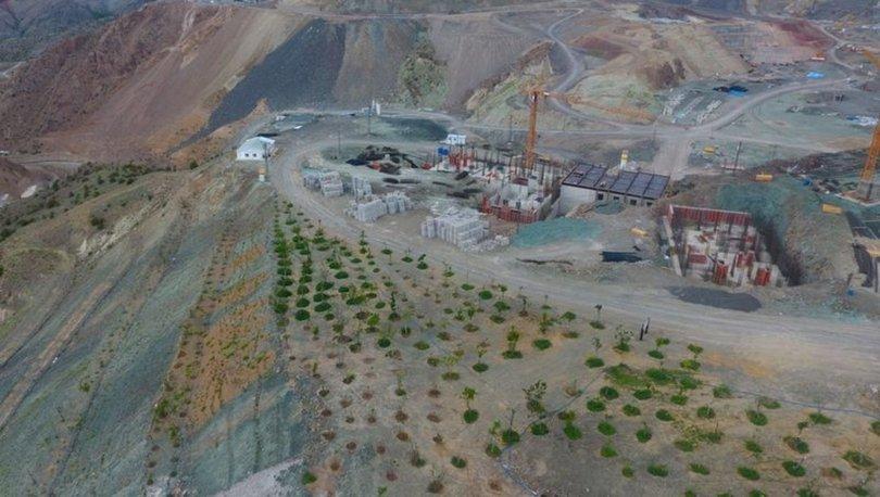 Yusufeli Barajı nedeniyle köylerle birlikte ağaçlar da taşındı - Haberler