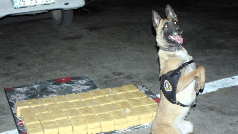 Van'da 217 kilo 500 gram eroin hassas burun Irmak'a takıldı