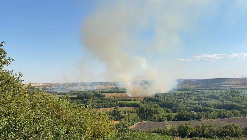 Hevsel Bahçeleri'nin 3 noktasında anız yangını